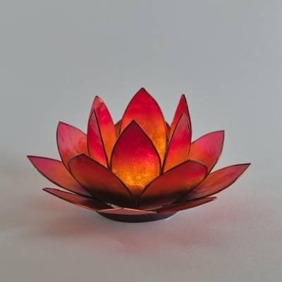 Lotosblüte Lotoslicht Nr.12 Bicolor orange-pink - 1